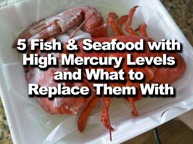 5 Fish and Seafood with High Mercury Levels and What to Replace Them With