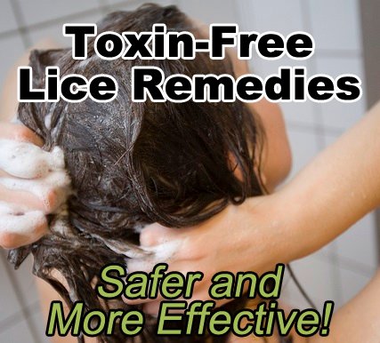 Toxic Free Lice Remedies