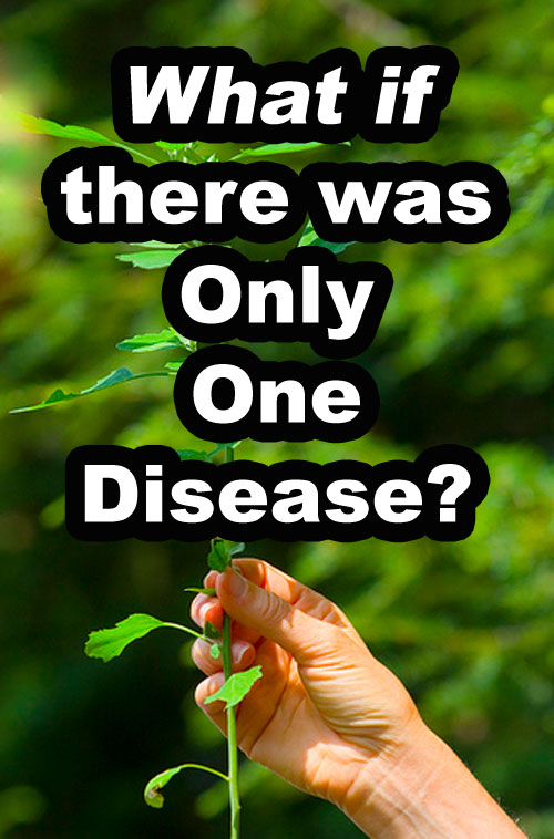 What if There Was Only One Disease?