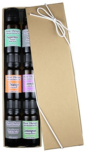 Top-6-Essential-Oil-Sampler-Set-Includes-100-Pure-Undiluted-Therapeutic-Grade-Essential-Oils-of-Lavender-Eucalyptus-Sweet-Orange-Peppermint-Lemongrass-and-Tea-Tree-10-ml-each-0